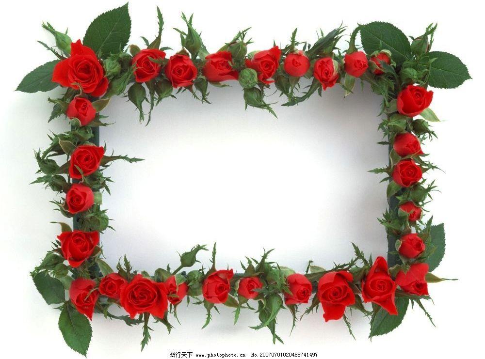 玫瑰花相框素材 边框 照片相框 像框 照片像框 画框 底纹边框