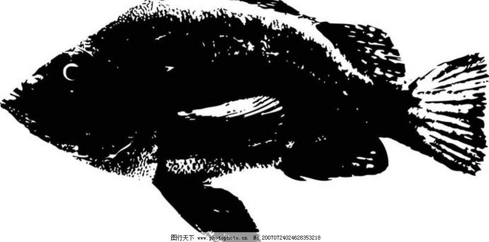 黑白鱼 鱼 水墨画 写生 写生画 写意画 画 中国画鱼 矢量 生物世界