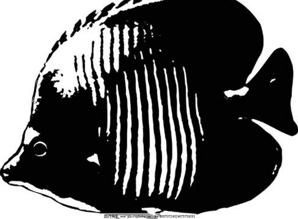 鱼黑白图片