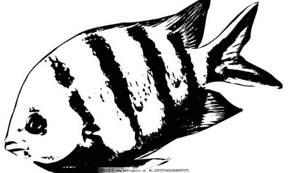 水墨画鱼图片