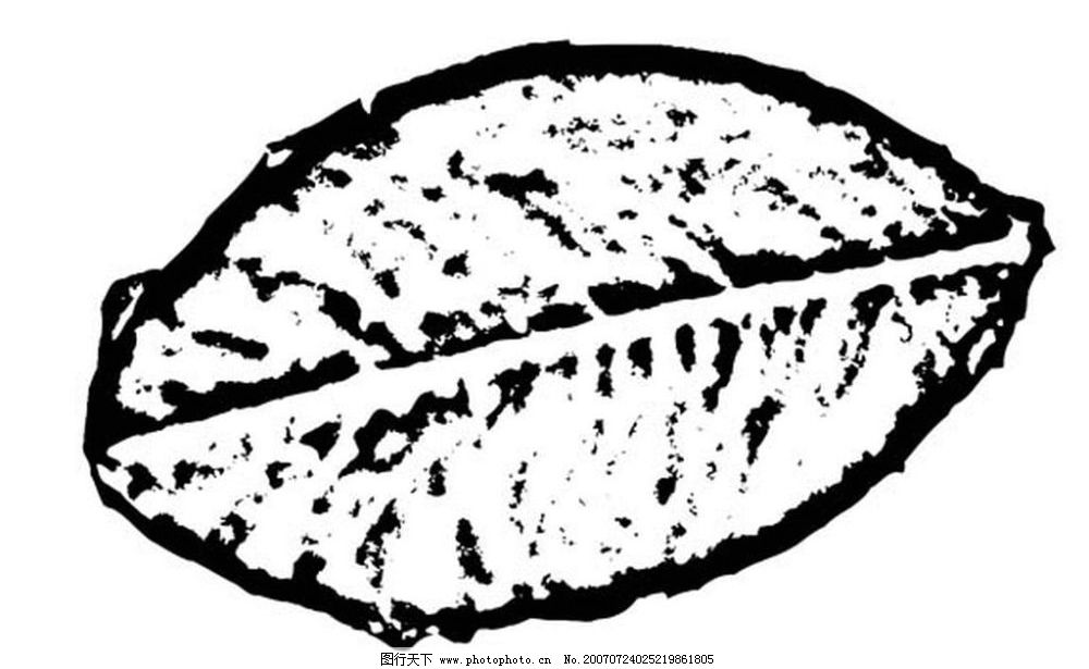 叶子图 树叶 叶子 植物叶子 黑白画 矢量 生物世界 树木 黑白植物叶子