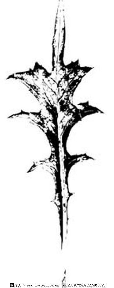 黑白植物叶子 树叶 叶子 植物叶子 黑白画 矢量 生物世界 树木 矢量