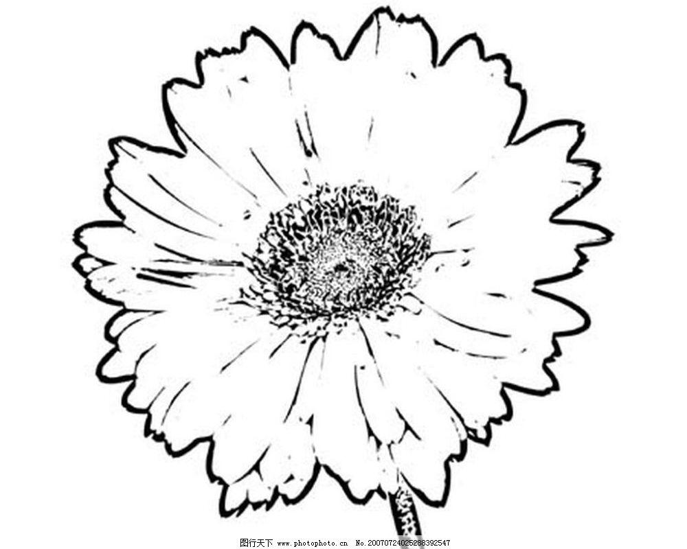 花朵 花 黑白画 矢量 生物世界 树木 黑白植物叶子 矢量图库 ai
