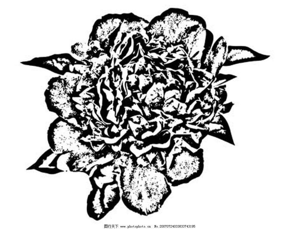 黑白花 画 黑白画 矢量