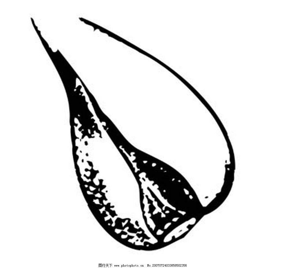 简笔画 设计 矢量 矢量图 手绘 素材 线稿 984_927