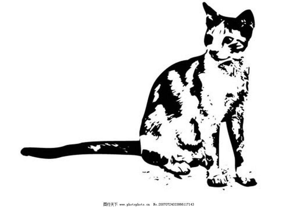 猫的黑白画图片