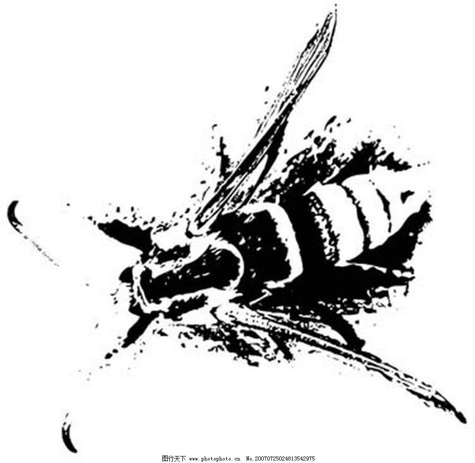 蜜蜂 黑白昆虫 黑白矢量图 黑白素材 黑白画 黑白图 黑白昆虫矢量图