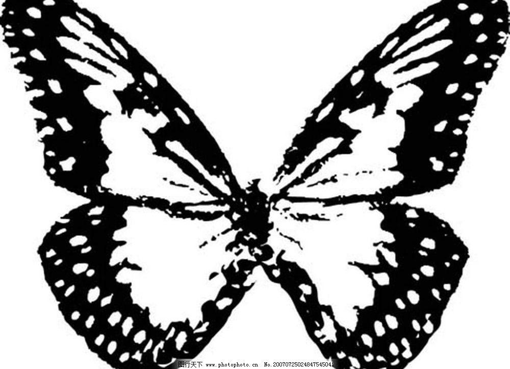 蝴蝶黑白素材图片