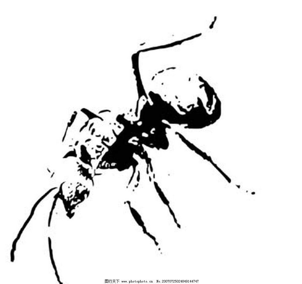 蚂蚁 昆虫 黑白昆虫 黑白矢量图