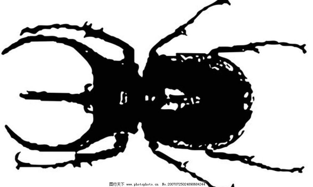昆虫矢量图 黑白昆虫 黑白矢量图 黑白素材 黑白画 黑白图 黑白昆虫