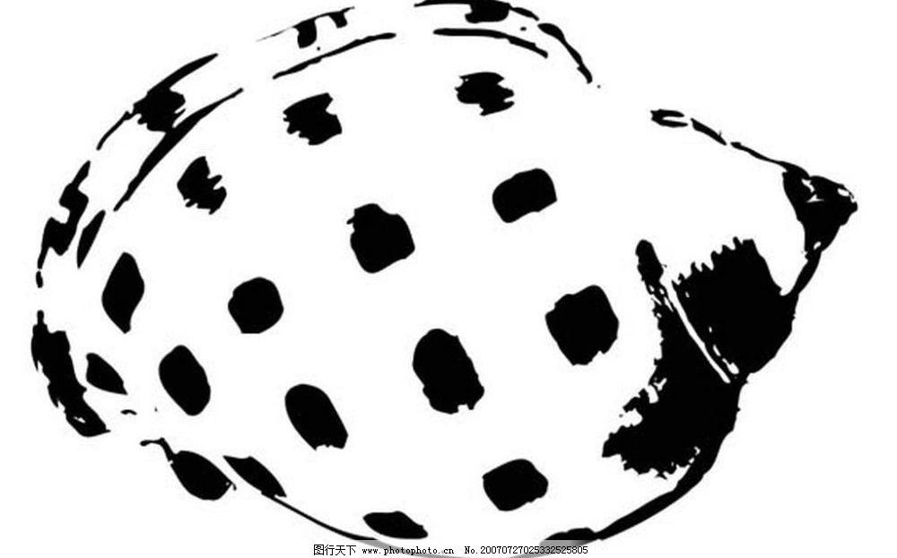 黑白海螺 贝壳 画 黑白图 矢量黑白图 黑白矢量图 海螺贝壳黑白矢量图