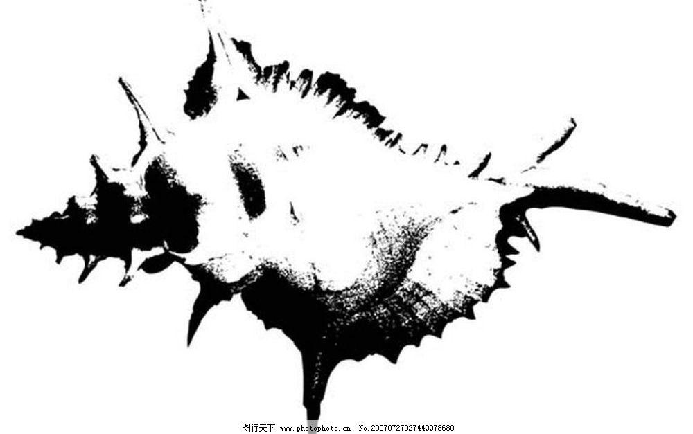 矢量黑白图 黑白矢量图 矢量 生物世界 海洋生物 海螺贝壳黑白矢量图