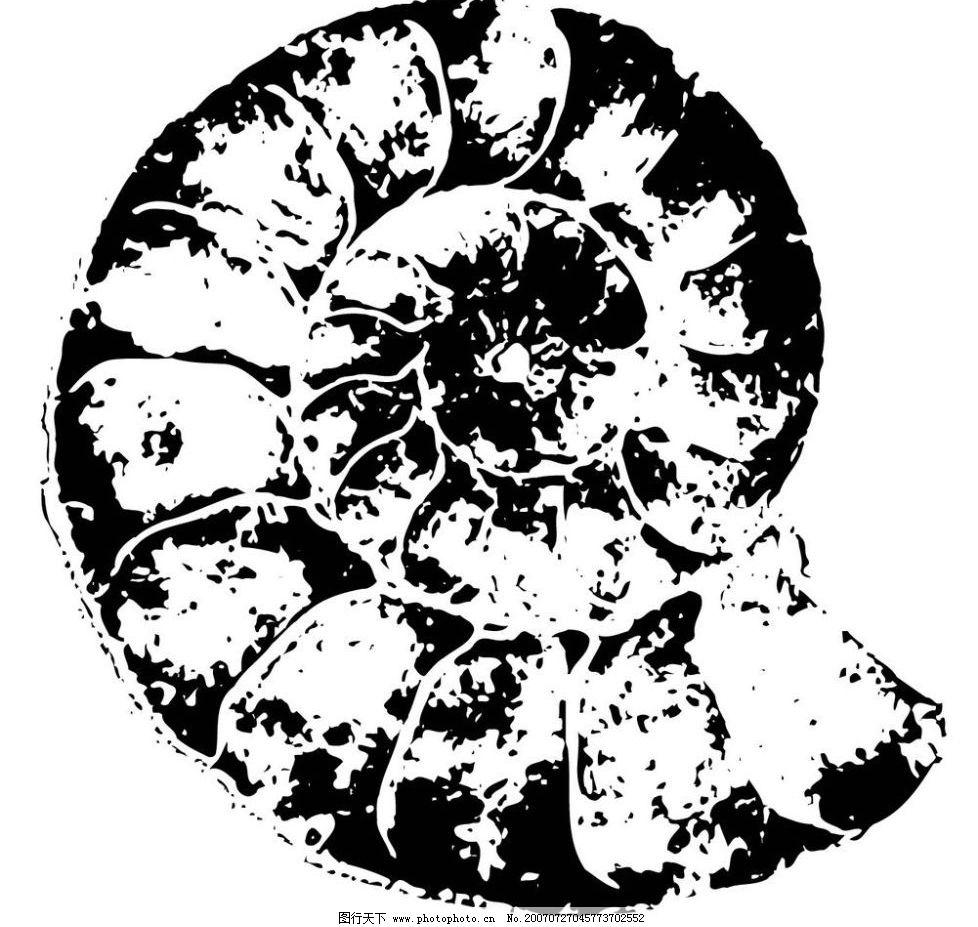 黑白矢量图 矢量 生物世界 海洋生物 海螺贝壳黑白矢量图 矢量图库 ai