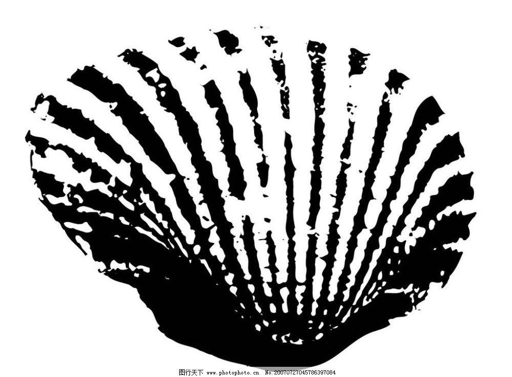黑白图 矢量黑白图 黑白矢量图 矢量 生物世界 海洋生物 海螺贝壳黑白