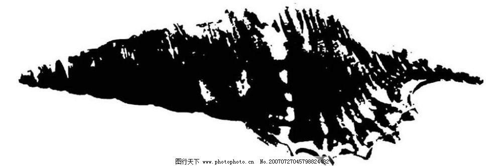 海螺矢量 贝壳 画 黑白图 矢量黑白图 黑白矢量图 生物世界 海洋生物