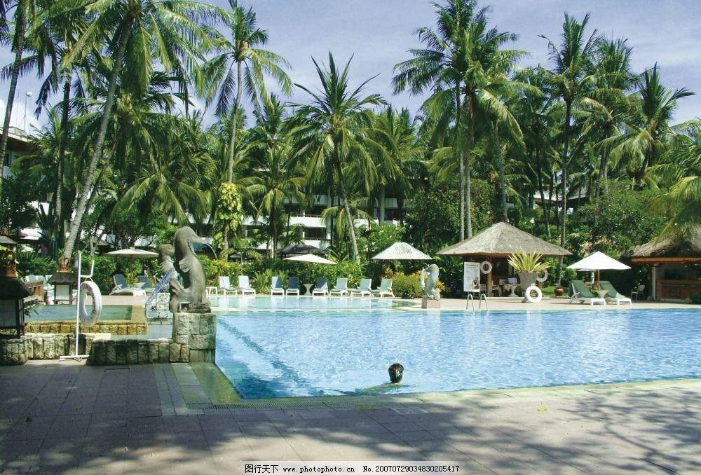 椰子树 椅子 凉亭 热带风光 热带 遮阳伞 摄影图 自然景观 自然风景