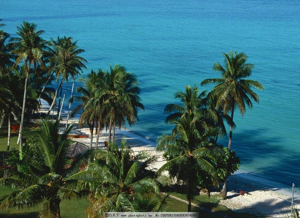 椰子树林 大海 海滩 沙滩 夏威夷-关岛塞班im 其他 图片素材 夏威夷