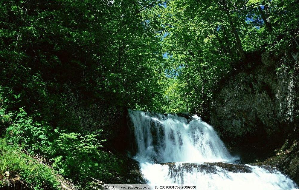 瀑布 流水 树林 树木 树 摄影图 自然景观 山水风景 高山流水 摄影