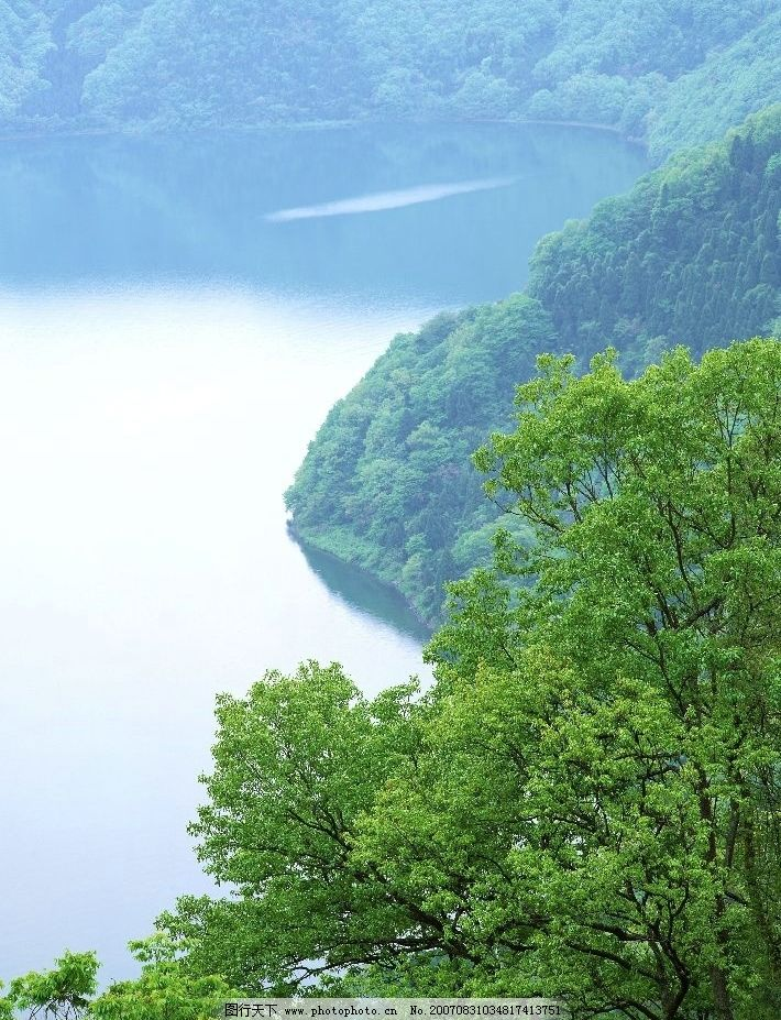 青山湖泊 湖泊 水 树林 树木 树 摄影 自然景观 自然风景 湖泊图片