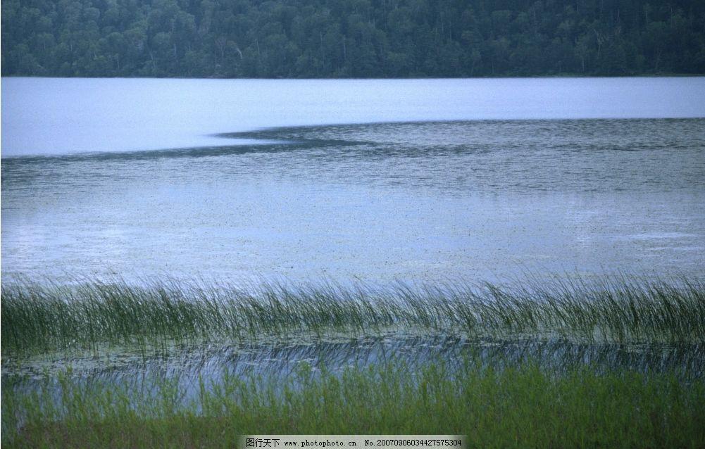 湖泊 森林 树木 树林 青山 绿水 四季风景 摄影图库