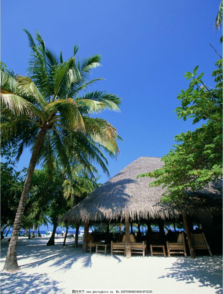 度假村 茅草屋 椰子树 海岛 旅游摄影 国外旅游 海滨度假 摄影图库
