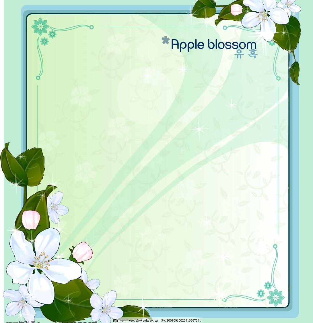 韩国花框 底纹边框 边框相框 矢量图库