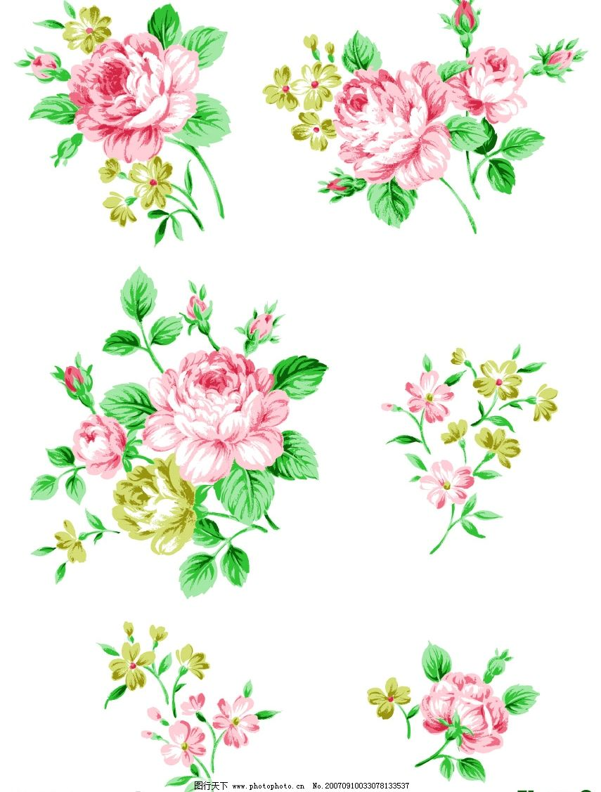 花朵花纹图片