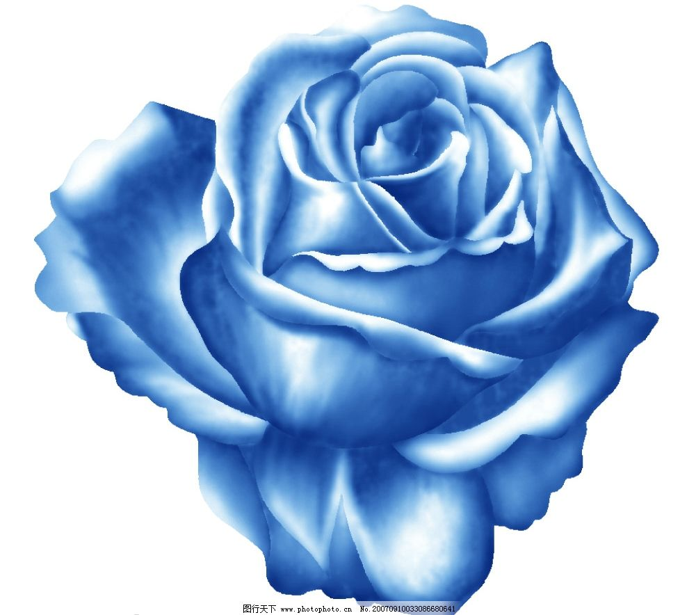 蓝玫瑰花朵 小花朵 韩国花纹psd素材 花朵psd素材 卡通花朵 韩国风格