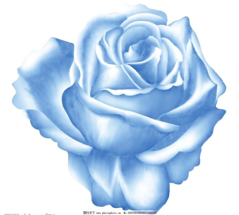 蓝玫瑰花朵素材下载 蓝玫瑰花朵模板下载 蓝玫瑰花朵 小花朵 韩国花纹