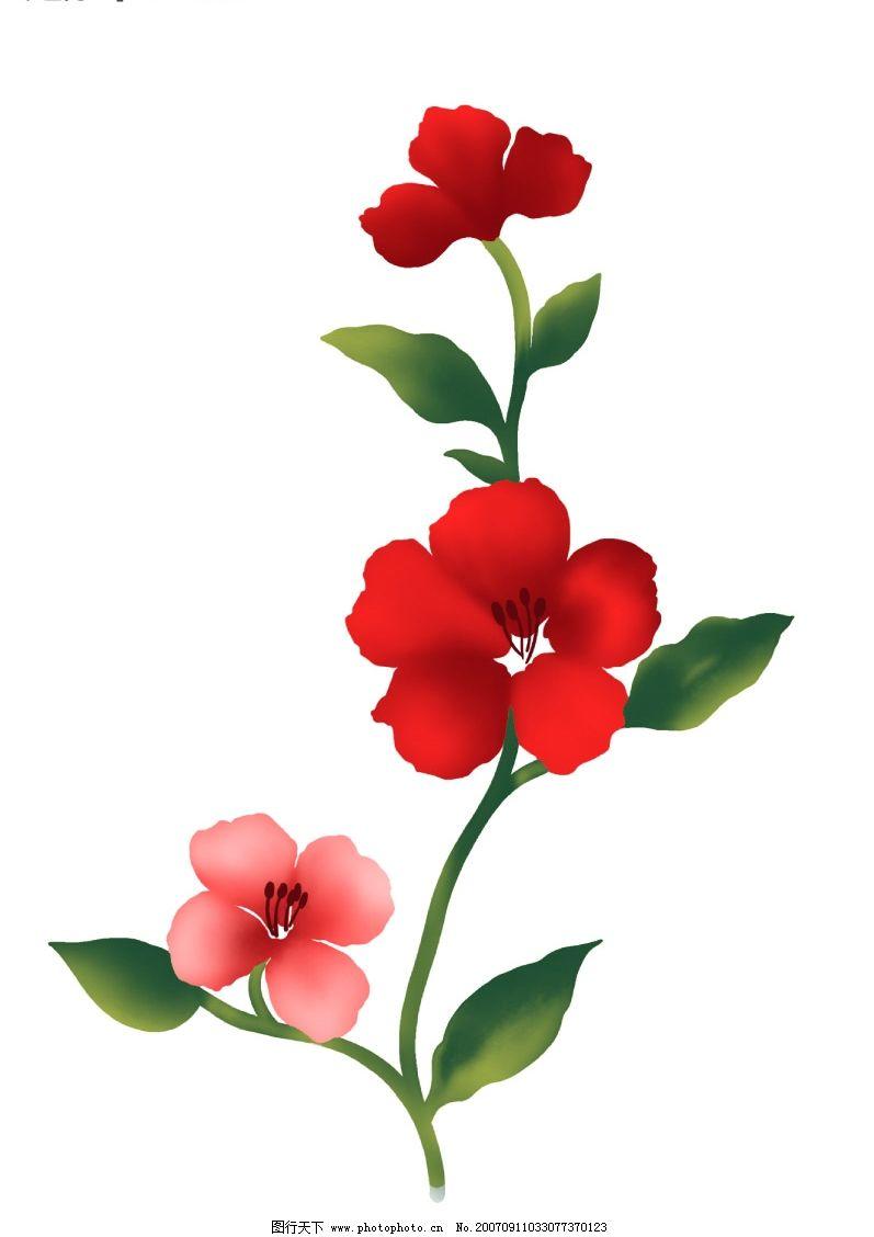 卡通小花朵图片