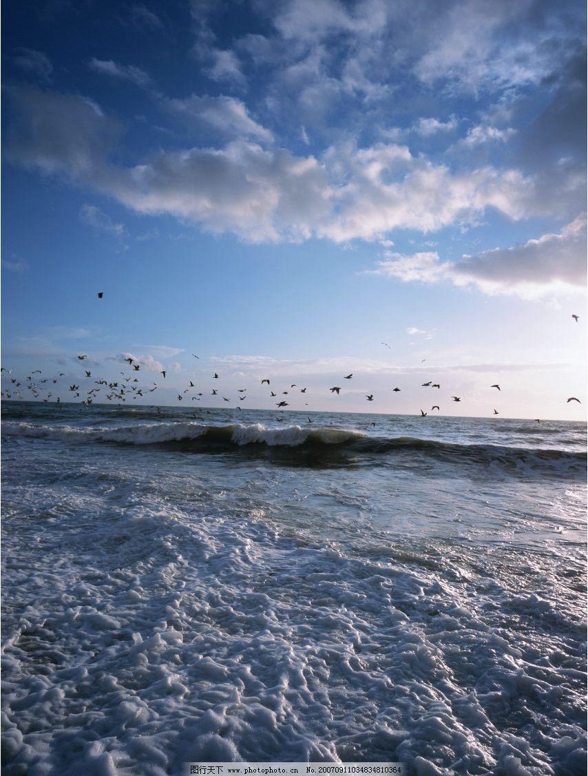 大海海鸥 蓝天 白云 自然景观 自然风景 蓝天风景 摄影图库