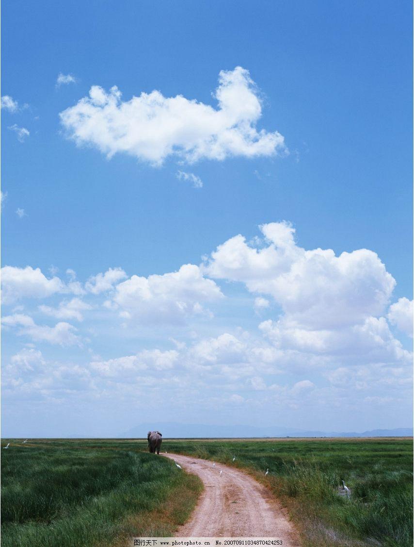 蓝天白云 蓝天 白云 道路 草地 自然景观 自然风景 蓝天风景 摄影图库