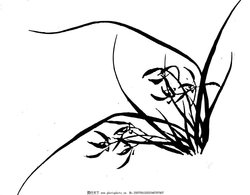 兰花 传统图案 花纹花边 矢量图库