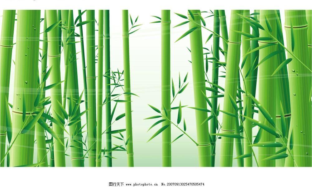 竹子 竹子底纹 花 底纹边框 其他 hgh-2007矢量素材系列之[花] 矢量图