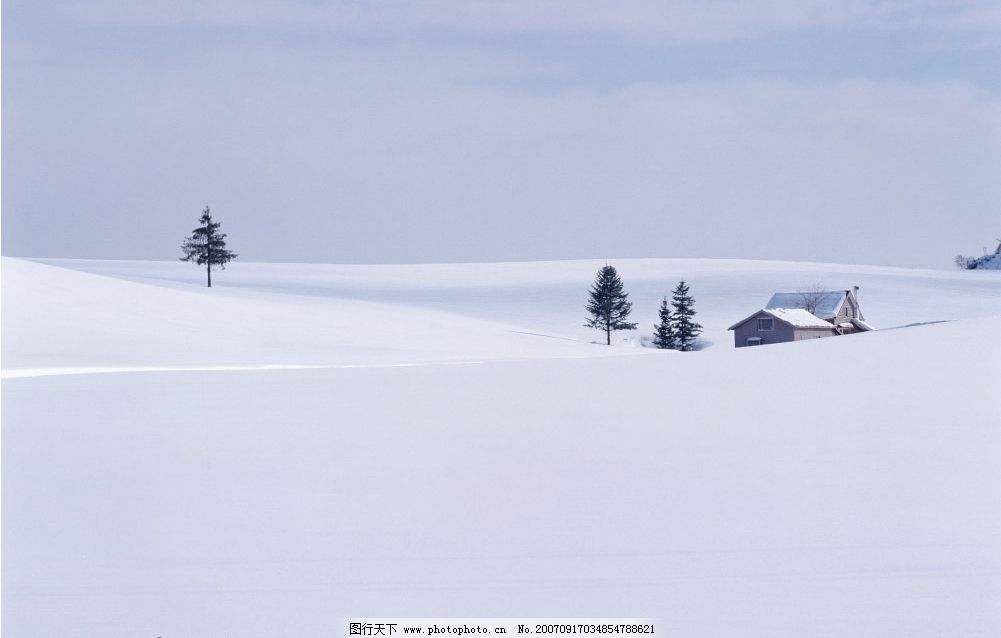 雪地树木房子 雪景 雪景图片 雪景壁纸 雪景桌面 雪景照片 雪景素材
