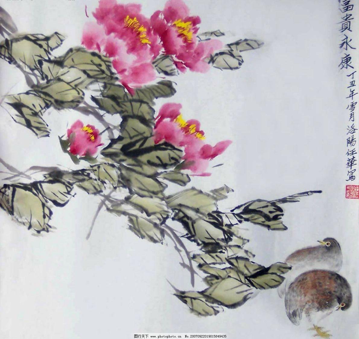 牡丹画图片
