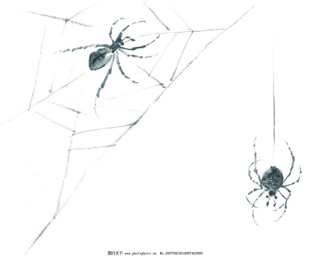 水墨风格的蜘蛛 水墨 蜘蛛 文化艺术 美术绘画 水墨风格的昆虫 设计