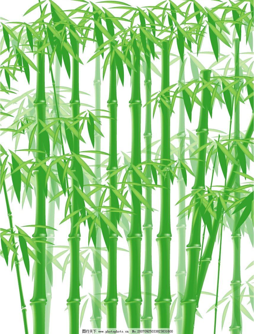 竹子景观手绘效果图