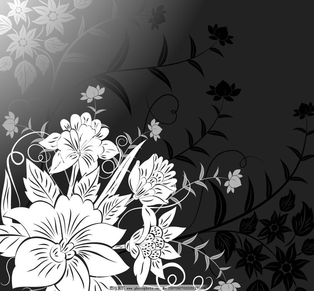 黑白花 黑白调 底纹边框