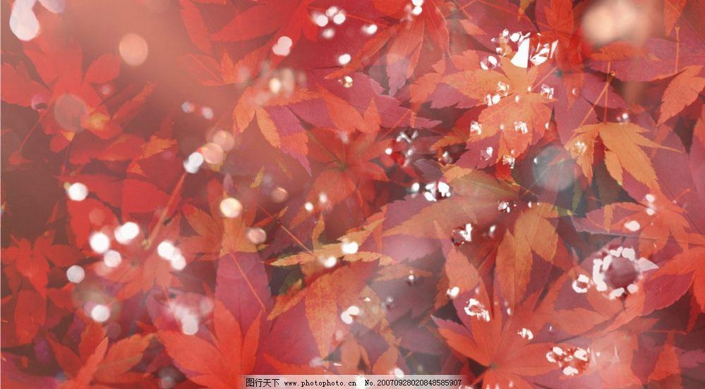 梦幻四季 溶图 壁纸 底纹边框 其他素材 设计图库   350 jpg