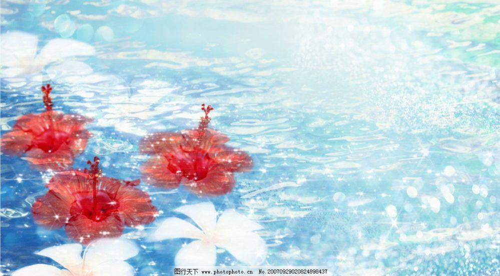 梦幻花卉 溶图 壁纸 底纹边框 其他素材