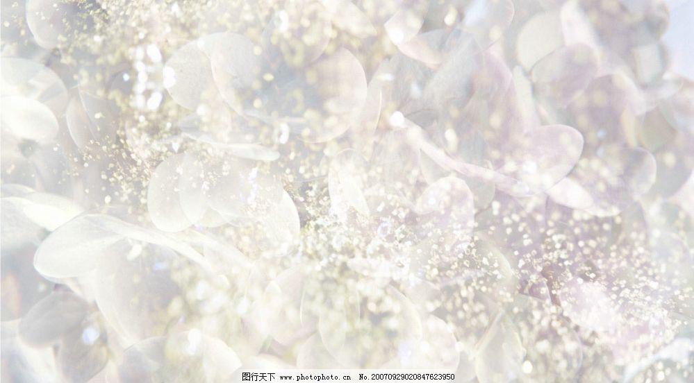 梦幻花卉 溶图 壁纸 底纹边框 其他素材 设计图库 350 jpg